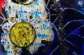 Rubin_Dead-Sea-Plankton-Fowler-01 - Cynthia B Rubin.jpg